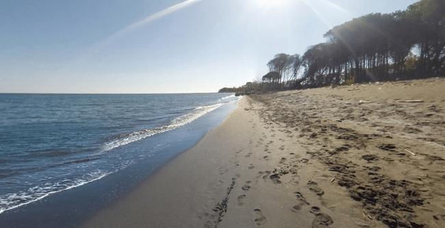 האי פרנץ יוזף