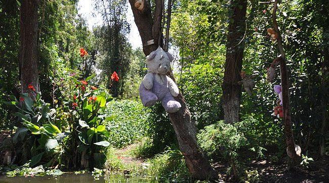 בובת פרווה תלויה על עץ