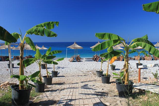 חוף בדהרמי