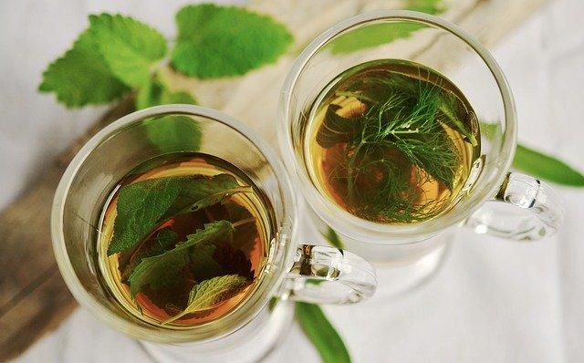 תה צמחים בט'ת